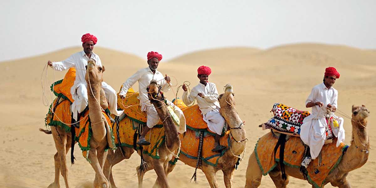Camel Fair & Festival